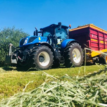 Grasernte Ladewagen New Holland